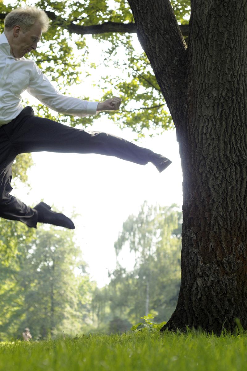 Kick a Tree